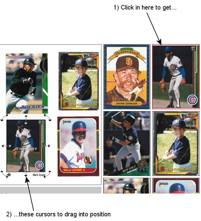 Software For Baseball Card Collection Scanning